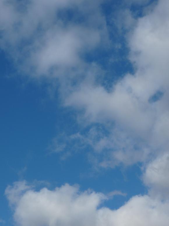 http://anneau2fer.cowblog.fr/images/P1000675.jpg