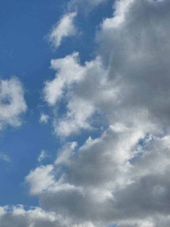 http://anneau2fer.cowblog.fr/images/P1000678.jpg